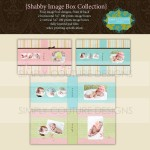 Shabby Baby Image Box Collection
